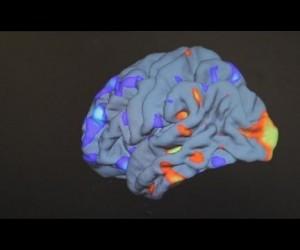 Аутизм. В ожидании прорыва — Science